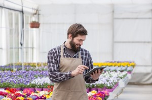 Male Garden Worker Using Digital Tablet